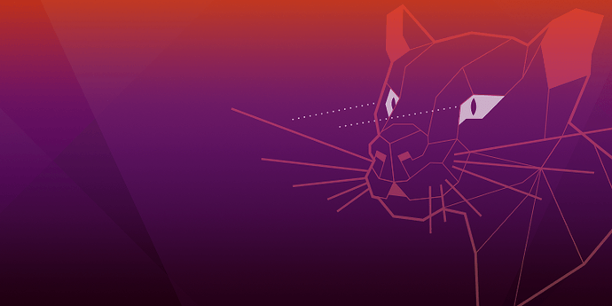 Ubuntu 20.04-LTS Installation
