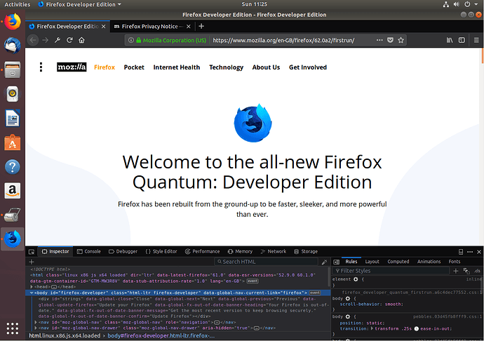 The first run of Firefox Developer Edition