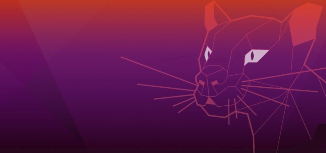 Focal Fossa Mascot Wallpapers Desktop Ubuntu Community Hub